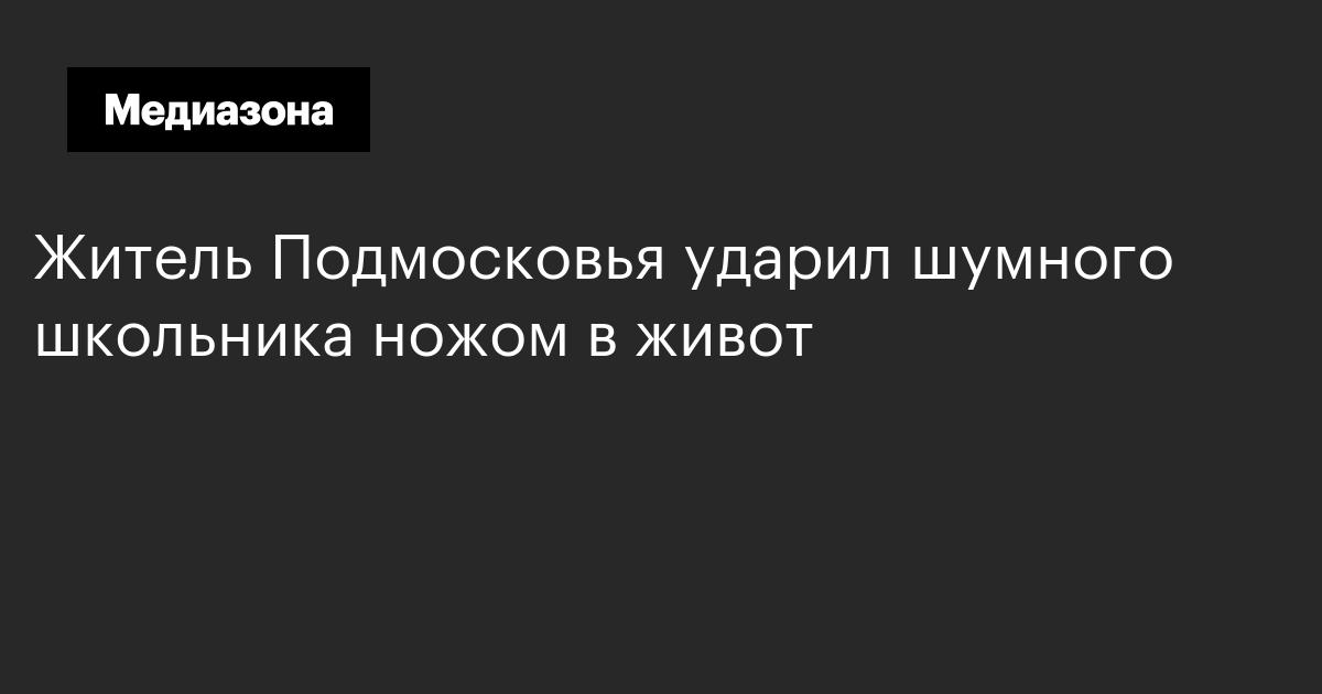 Житель Подмосковья ударил шумного школьника ножом в живот